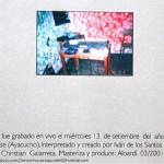 alta_amistad-teriya-2