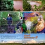 RUIDO AL PASO 2: Ecologia Sonora/Paisajes Sonoros Hibridos (Agosto, 2006)