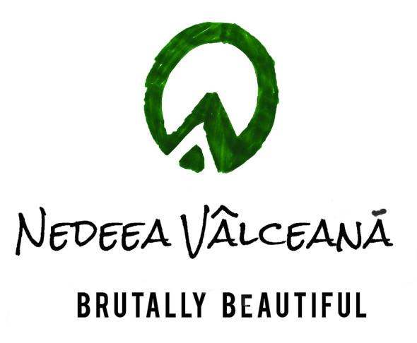 logo NEDEEAweb